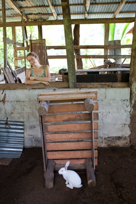 Maiju in the goat barn with a rabbit visiting from the other side of the fence