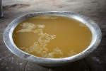 ....Goma de tucuri, the liquid squeezed out of the manioc root, often used in soups...