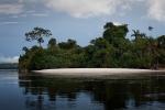 A typical white sandy beach found along the Rio Negro.